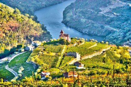 Weinberge im Dourotal, Portugal, © iStockphoto.com - uisportugal